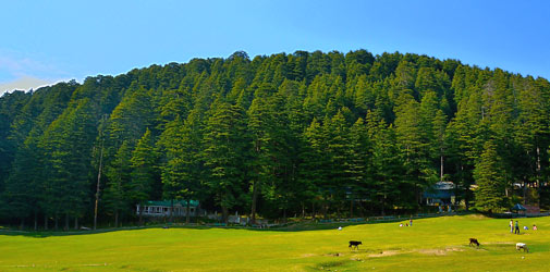 best-of-himachal-tour.jpg