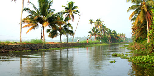 Hills & Backwaters